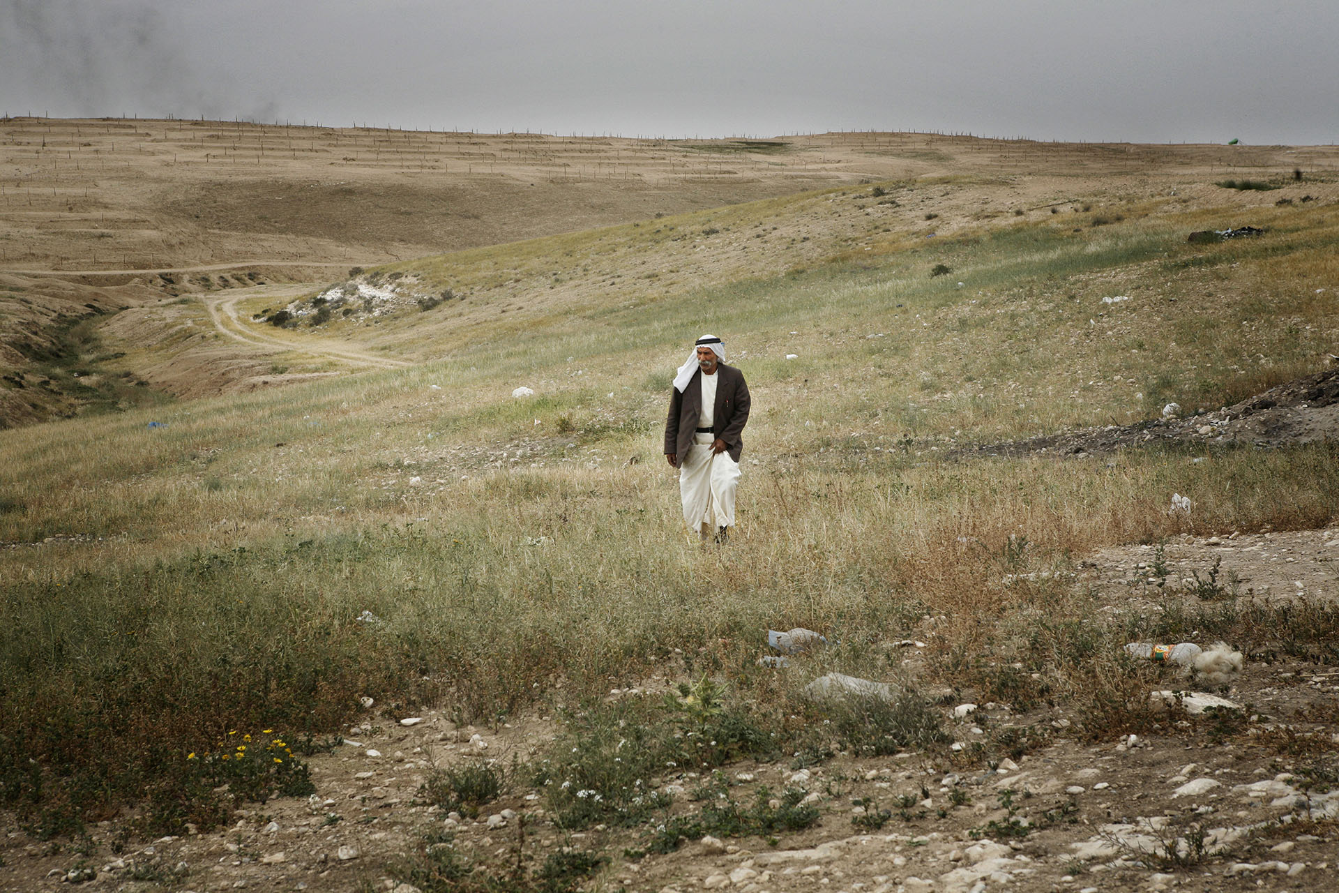 Sheikh Sayah Al Turi walks towards the village from the nearby wadi. In the background young trees planted by the Jewish National Fund (JNF) are visible. April 2009