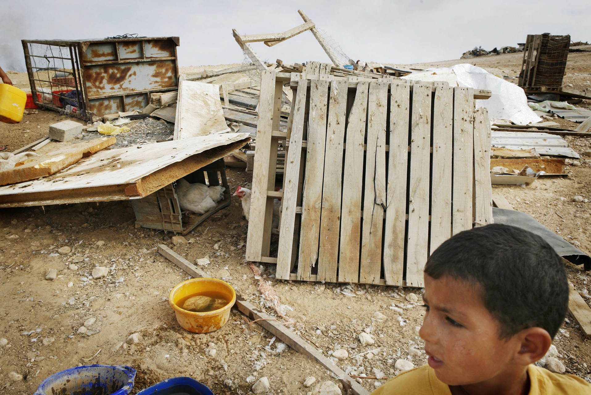 Mohammed surveys the destruction of the village he called home. Al Araqib, September 2010